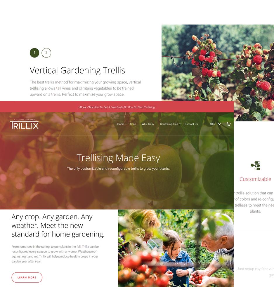 Website Built for Trillix